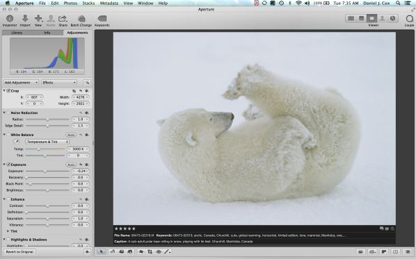 Screen Shot 2013 10 15 at 7.35.17 AM 600x373 Question from Bruce Faanes, Polar Bear Photo Tips